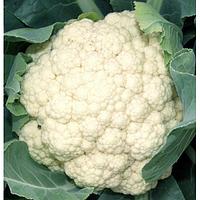 Cемена капусты цветной Униботра 100 грамм Kouel