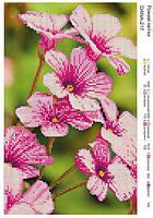 """Схема для вышивания бисером """"Розовые цветы"""" 217"""