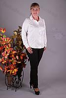 Блуза 3600-473/3 батал от производителя оптом