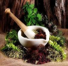 Настои, эфирные масла, травяные запарки для бани и сауны.