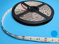 Светодиодная LED лента 50/50 синий цвет