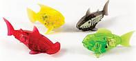 Набор из 4 плавающих рыбок, Роботы-рыбки, Hexbug, оригинал из США