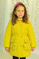 Зимняя куртка Рози с нат. мехом енота цвета лайм