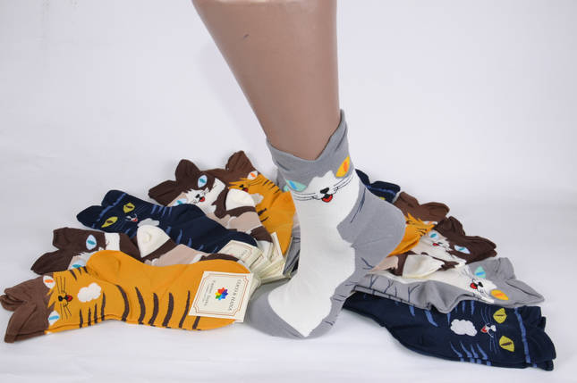 Женские носки Кошечки (TK6112) | 12 пар, фото 2
