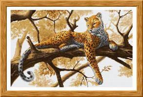 Живая природа (фауна)