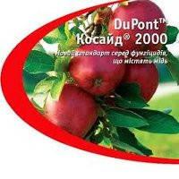 Фунгицид Косайд® 2000