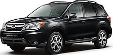 Кенгурятники на Subaru Forester (2008-2013)