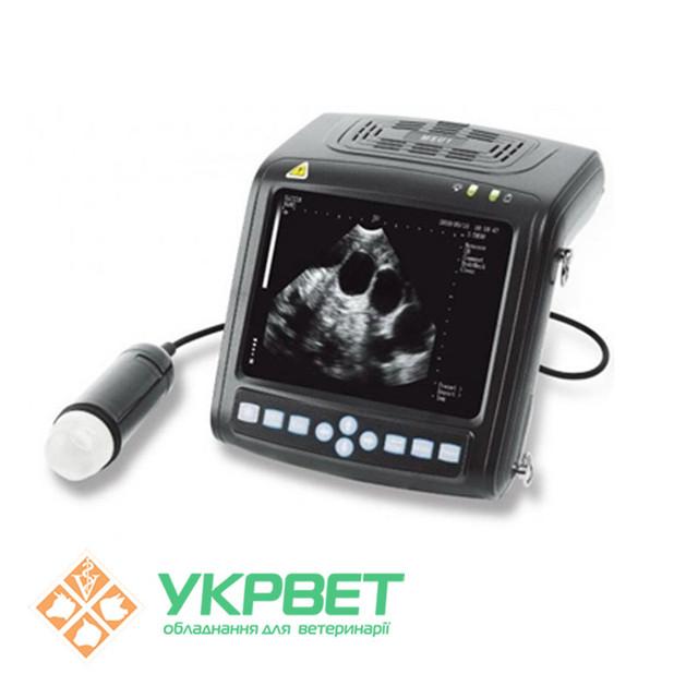 Ветеринарные ультразвуковые сканеры для свиней