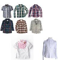 Сорочки, блузи