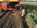 Комбайны картофелеуборочные Akpil (+ на лук и морковь) , фото 4