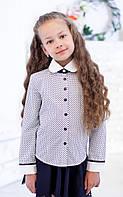 Блузочка школьная белая в синий горошек