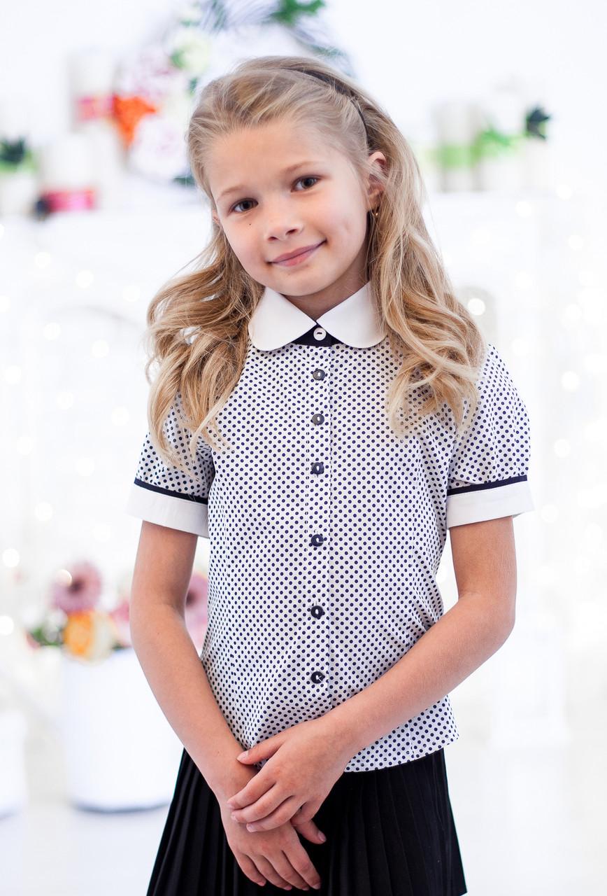 Блузка школьна в горошек на короткий рукав