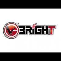 Ежедневник Bright