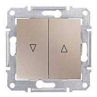 SDN1300168. Выключатель для жалюзи. Электрическая блокировка. Титан. Sedna