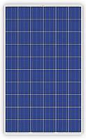 Солнечная батарея Trina Solar TSM-260PD05.08