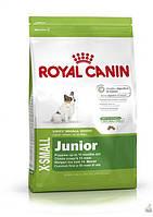 корма для сиамских котят Royal Canin