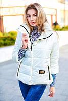 Куртка с укороченным рукавом и пуговицам на воротнике 7075 Норма! (ВИВ)