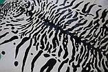 Шкура коровы крашенная под сибирского или уссурийского тигра на белом фоне, фото 4