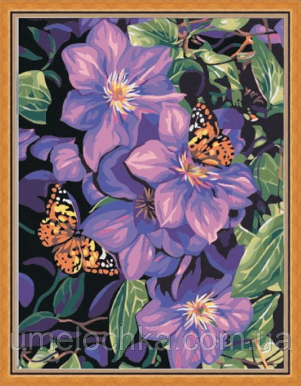 Картина по номерам Идейка Бабочки на климатисах (KHO129) 40 х 50 см