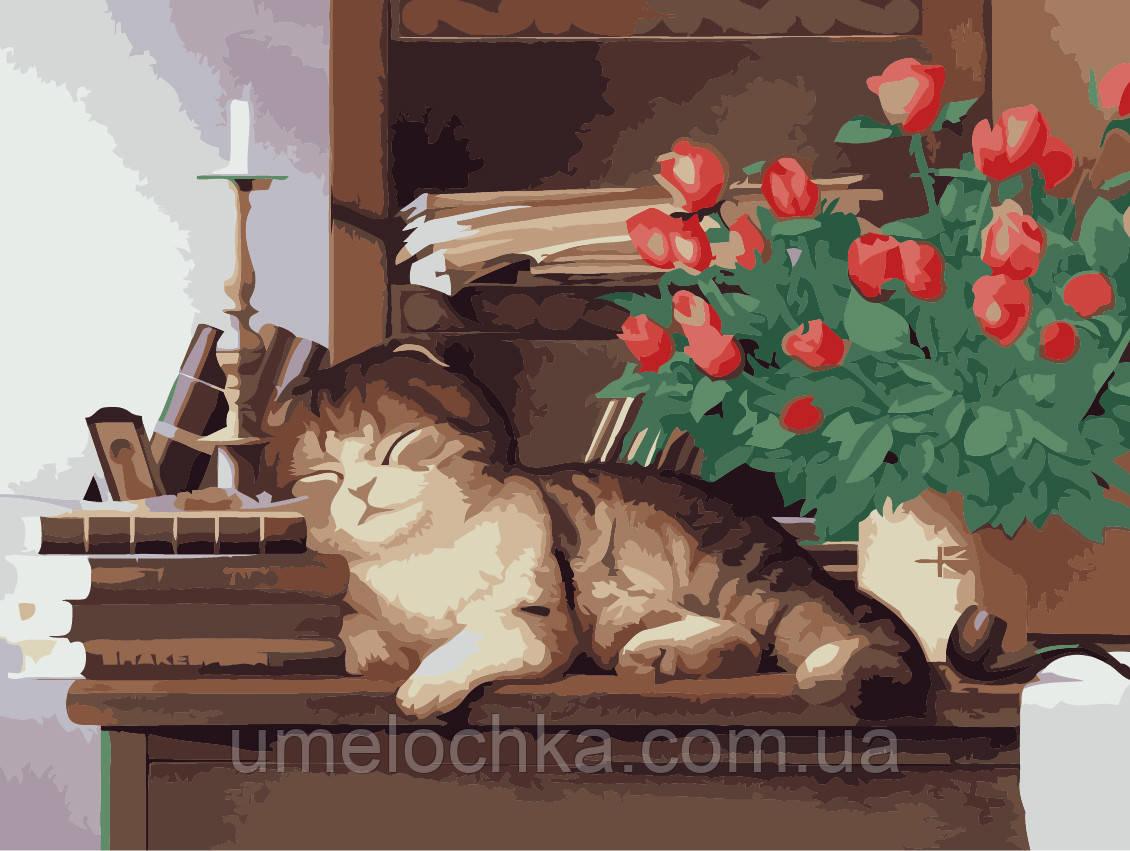 Картина раскраска по номерам без коробки Идейка Дамшний любимец (KHO2441) 30 х 40 см