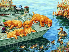 Раскраска по цифрам Любопытные щенки (VK150) 30 x 40 см