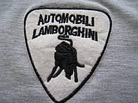 Automobili Lamborghini подростковая футболка купить в Украине, фото 1
