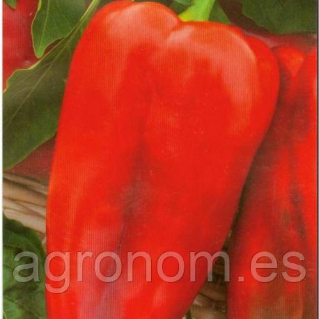 Cемена перца Самурай F1 100 семян Kouel