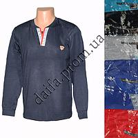 Мужской котоновый реглан TG17 (в уп. до 5 расцветок) оптом со склада в Одессе