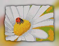 """Схема для вышивки бисером на подрамнике (холст) """"Ромашка и букашка"""" (полная зашивка)"""