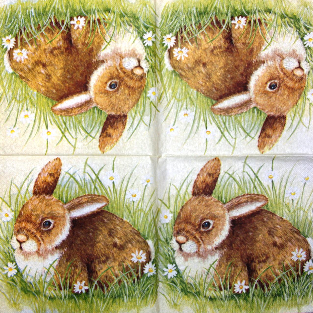 Декупажні серветки Кролик 1037