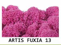 Стабилизированный мох. Цвет Artis Fuxia 13