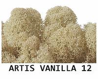 Стабилизированный мох. Цвет Artis Vanilla 12