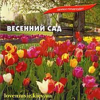 Музыкальный сд диск ВЕСЕННИЙ САД (2005) (audio cd)