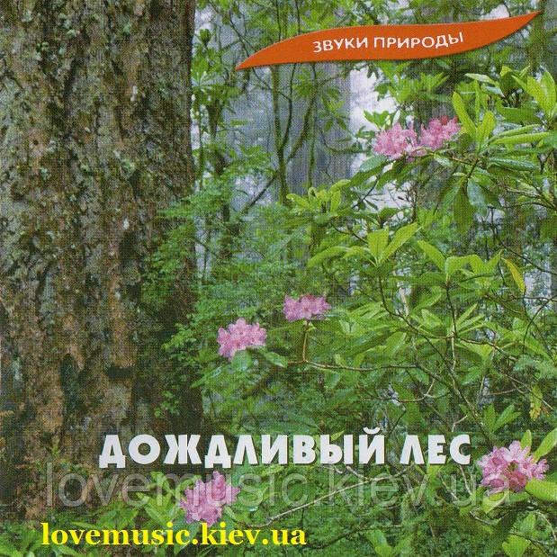 Музичний сд диск ДОЖДЛИВЫЙ ЛЕС (2005) (audio cd)