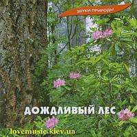 Музыкальный сд диск ДОЖДЛИВЫЙ ЛЕС (2005) (audio cd)