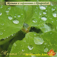 Музыкальный сд диск МУЗЫКА ДОЖДЯ (2005) (audio cd)