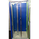 Душевая дверь Atlantis ZDM-100-2 100х190, фото 3