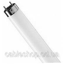 Лампа люминесцентная TL-D 36 Вт 33 G13 Philips