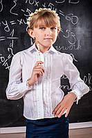 Блуза детская с кружевными рюшами