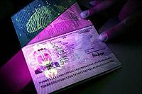 Віза на 2 роки в чистий паспорт