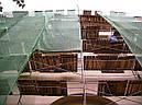 Защитная фасадная сетка, фото 3