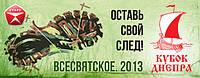 Спортивное ориентирование. Кубок Днепра 2013
