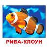 Комплект карточек - Жители Водоемов 20 (украинский язык)
