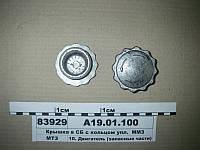 Крышка патрубка в сб. с кольцом упл. (пр-во ММЗ)