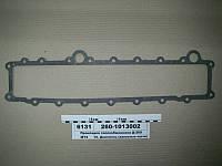 Прокладка теплообменника Д-260 (пр-во ММЗ), 260-1013002