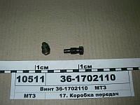 Винт уставной (пр-во БЗТДиА), 36-1702110