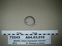 Шайба гайки передней ступицы (пр-во МТЗ), А04.03.019