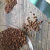 Кофе якобс растворимый Jacobs Monarch (Бразилия), 400 г - Фото