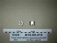 Гайка М16 (трансмиссия; крепление крыла) ГОСТ 5918-73 (пр-во БЗТДиА), М16-6Н.019