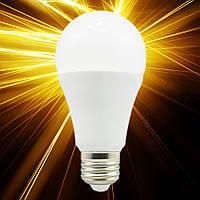 Светодиодная лампа Biom A60 12W E27
